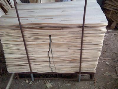 杨树旋切木皮