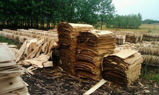 旋切木皮 单板
