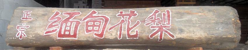 缅甸花梨原木材