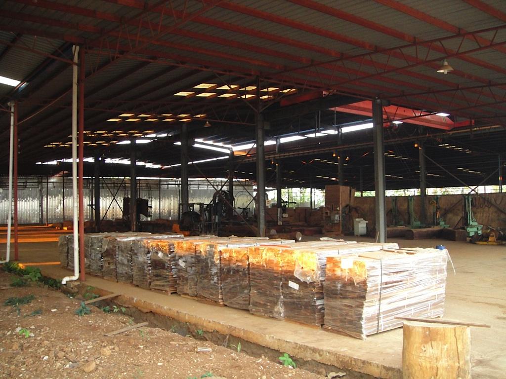 转让老挝红木工厂(酸枝,紫檀,花梨,花枝)