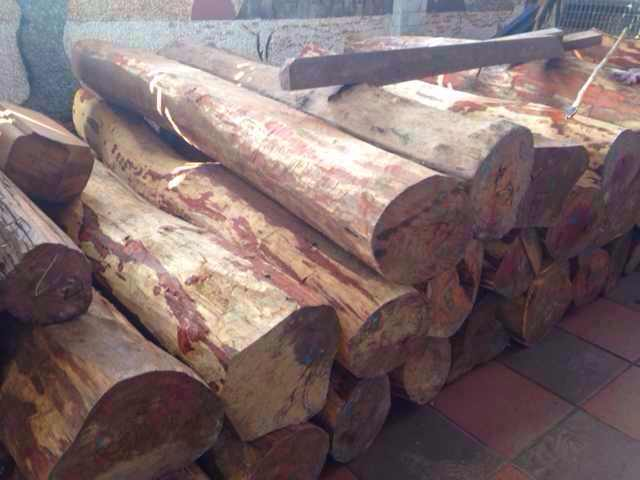 老挝大红酸枝原木(新木)