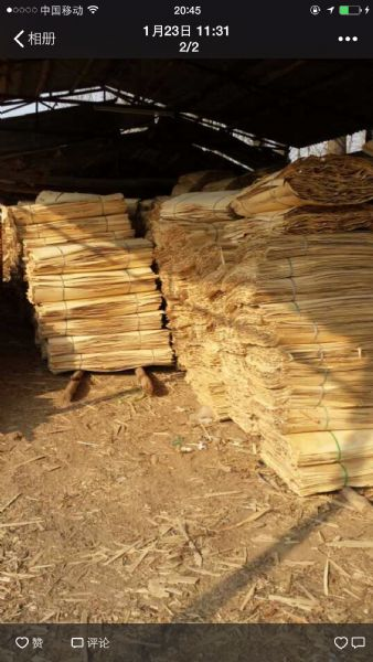 杨木旋切木皮