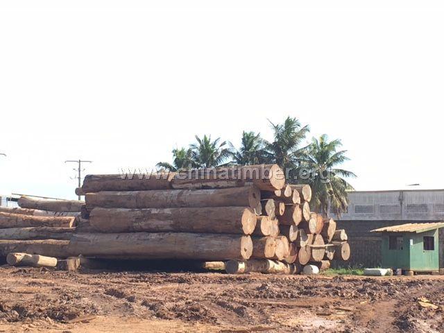 巴拿马红铁木 (AZOBE)