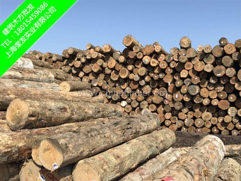 辐射松木方建筑木方精品木方