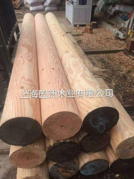 上海花旗松销售厂家,花旗松最新价格