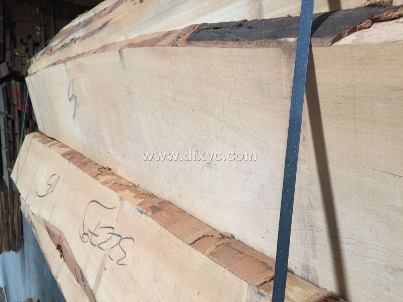 全进口榉木毛边板材,5公分,长度2米到4米