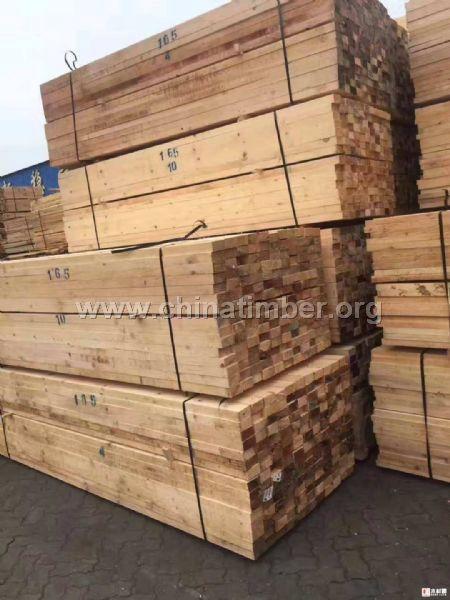 俄罗斯白松,落叶松,樟子松板材木方;松木百叶片