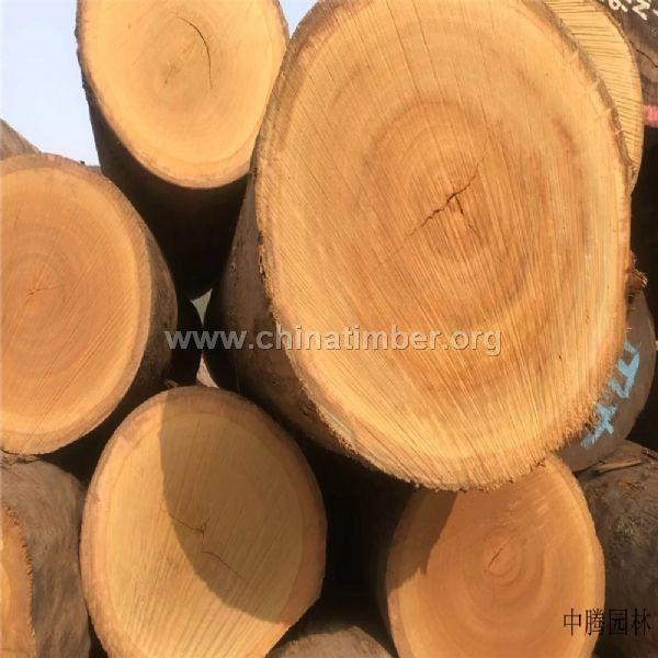 巴蒂木材加工/巴蒂非洲�S花梨