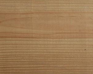 俄罗斯樟子松木板材