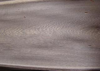 鸡翅(铁刀)木皮