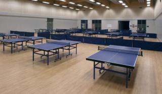 乒乓球室用塑胶地板