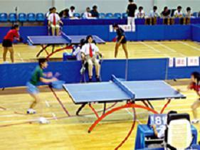 柞木乒乓球馆专用地板