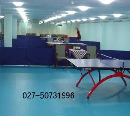 pvc防滑橡胶地板
