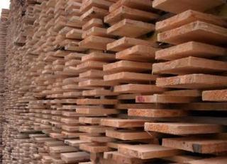 落叶松板方 锯材