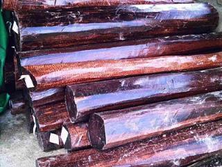 圭亚那进口原木蛇纹木