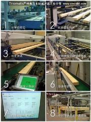特奥马是木材超声波工业分等设备
