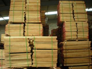 价廉物美的木材-欧洲榉木
