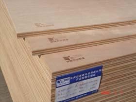 骏丰牌E1-700-18mm桉木芯胶合板