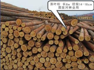 2014年木材落叶松 长6m 径级14-16cm