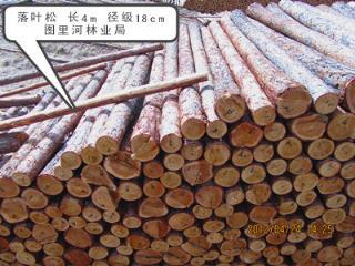 2014年木材落叶松 长4m 径级18cm
