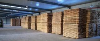 长期出售杨木,水杉,硬杂,干木料锯材