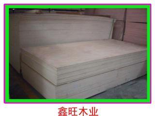 胶合板生产厂家,橡木胶合板批发找鑫旺木业