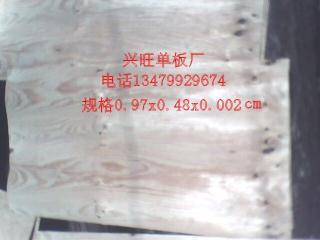 建筑模板专用松木木皮