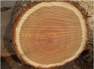 欧洲橡木原木(白橡)实木地板,实木复合地板,地板料