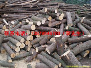 柏木 梓木 苦楝木等杂木原木板材供应