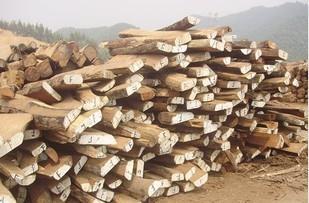 低价供应非洲崖豆木鸡翅木