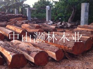 桃花芯原木