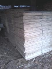 杨木木皮单板,面板
