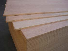 桉木多层胶合板(夹板)