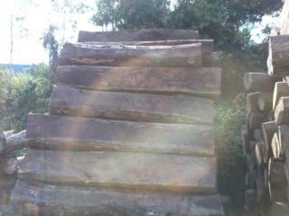 柬埔寨花梨