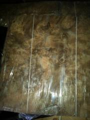 黑胡桃树榴