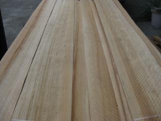 杂木排骨影