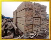 供应莆田木材