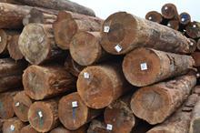 莆田木材加工