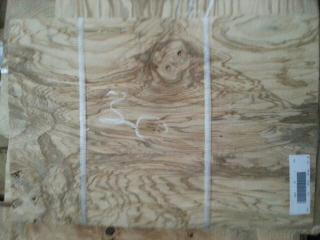 橄榄树瘤 名贵天然木皮