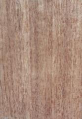 相思木 木皮