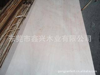 杨木环保胶合板