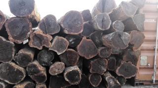南美酸枝(巴拉圭苏木,阿根廷牛角木,黑檀)