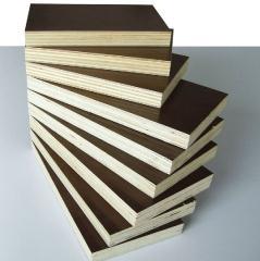 金森源高档建筑覆膜模板(3*6尺)