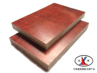 """胶合板,建筑模板,""""龙建""""模板,松木模板,漳州建筑"""