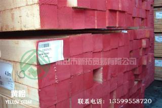 黄桧板材供应商