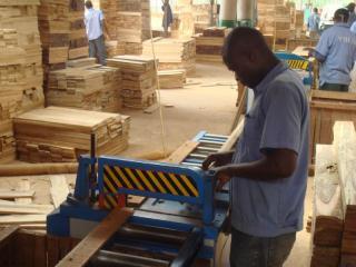柚木加工 非洲贝宁工厂