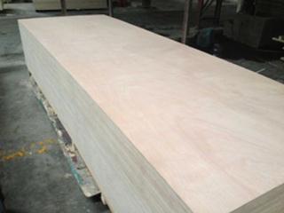 大尺寸胶合板