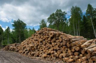 俄罗斯原木、板材