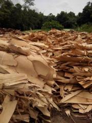 造纸木浆纸浆 旋切桉木单板纸浆