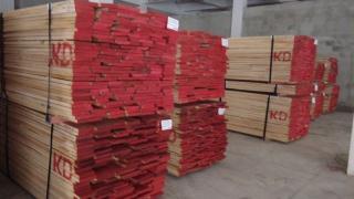 美国红橡木--丰之林木业